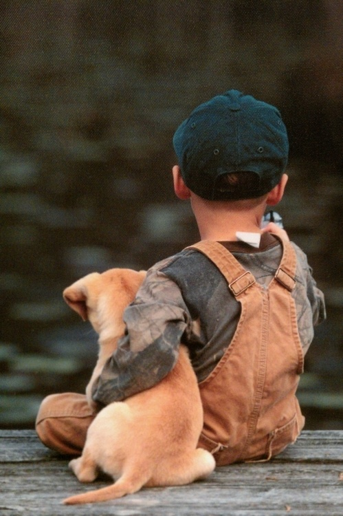 little-boy-and-puppy-1461670756_org